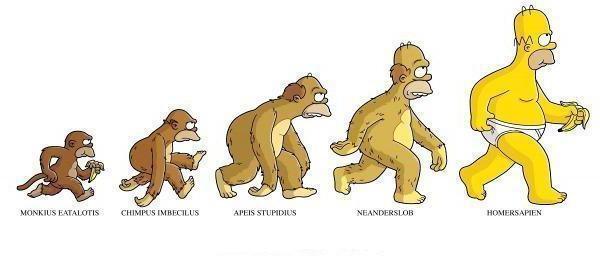 Эволюция человека, оригинал