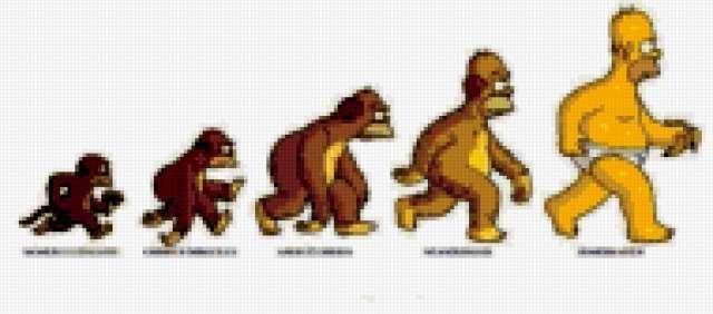 права человека эволюция развития реферат