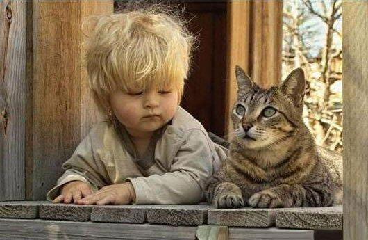 Мальчик и кот, оригинал