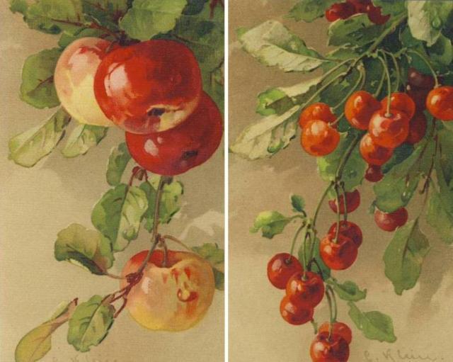 Яблоки и вишня, оригинал