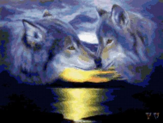 Волчья любовь, предпросмотр