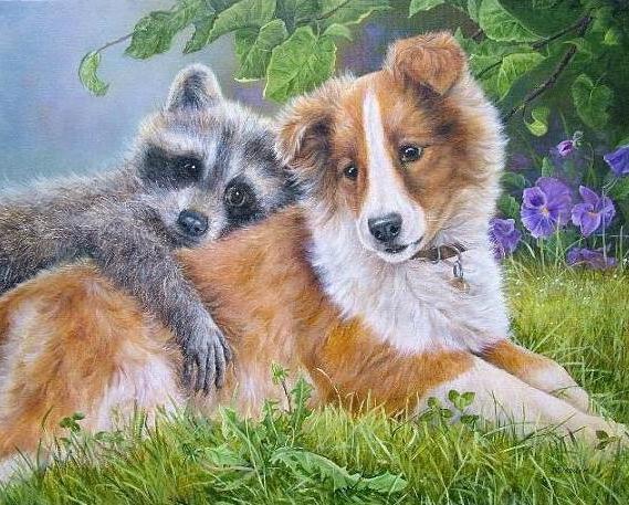 Енот и собака, оригинал