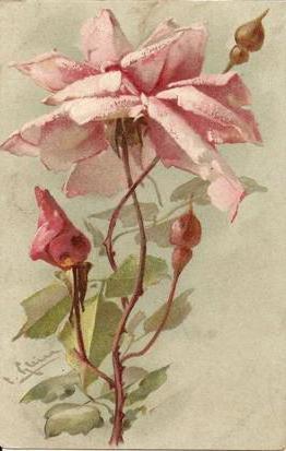 Картинки по запросу винтажная роза