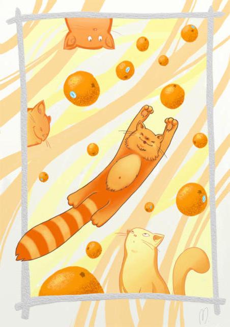 Апельсин, юмор, апельсин