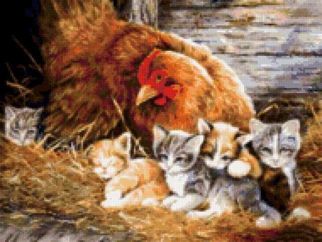 Курица и котята, предпросмотр