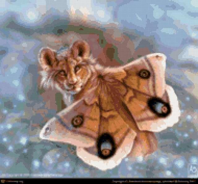 Тигрёнок-мотылёк, предпросмотр