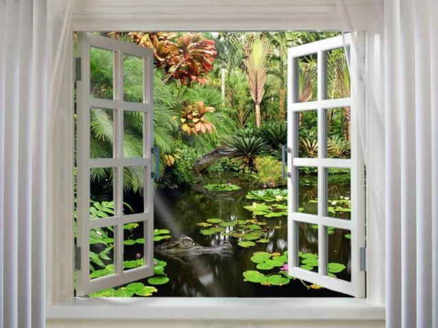 Вид из окна, окно, пейзаж,