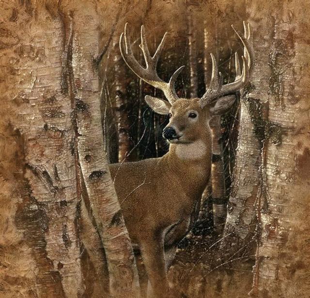 Хозяин леса, оригинал