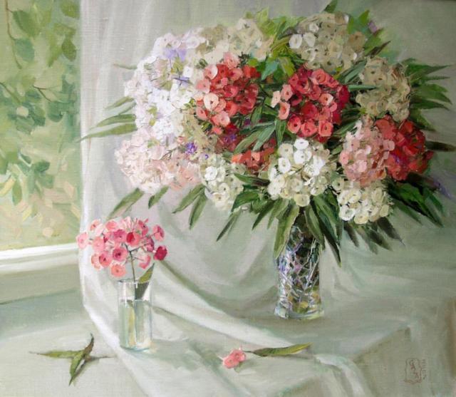 Флоксы, цветы