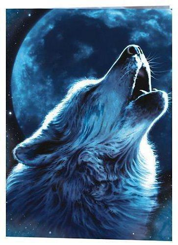 волк и луна картинки