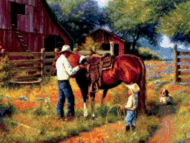 Уроки езды, живвотные, лошади,