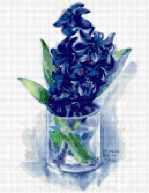 Гиацинты, гиацинты, цветы