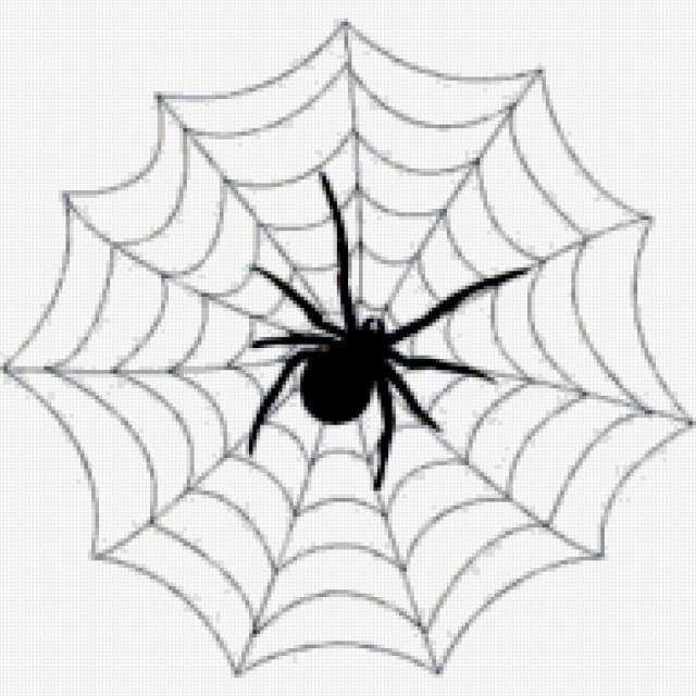 Паук в паутине, предпросмотр