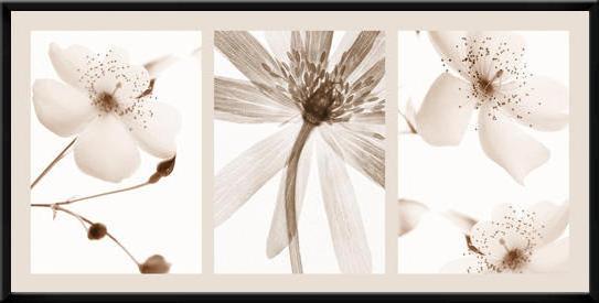 Цветы триптих цветы триптих