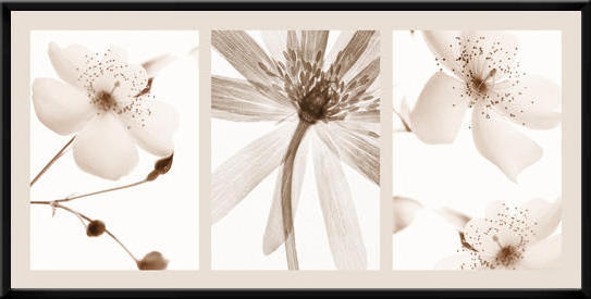 Цветы, триптих, оригинал