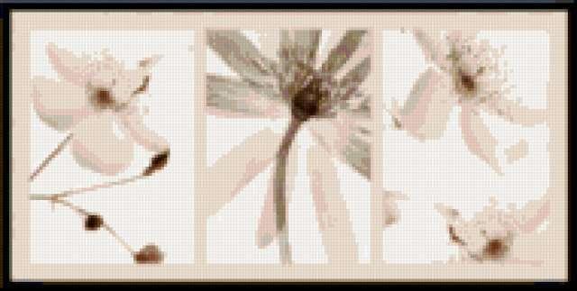 Цветы, триптих, предпросмотр