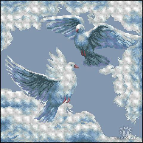 голуби с людьми и без