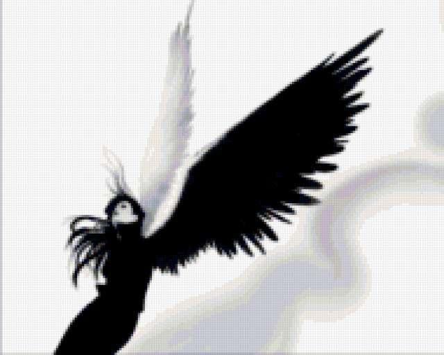 Ангел. Чёрное и белое,