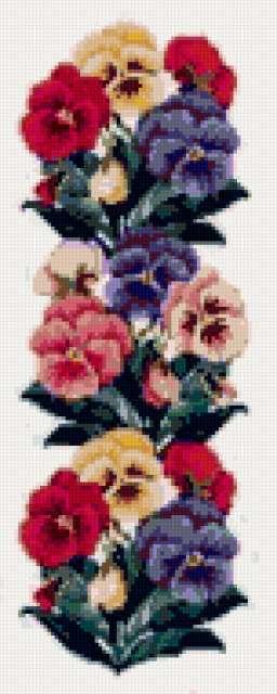 Дорожка из цветов, виола,