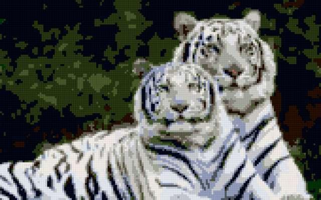 Белые тигры, предпросмотр