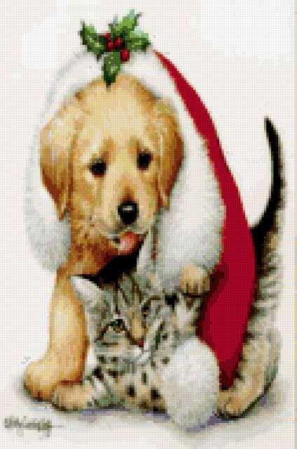 Котенок и щенок, предпросмотр