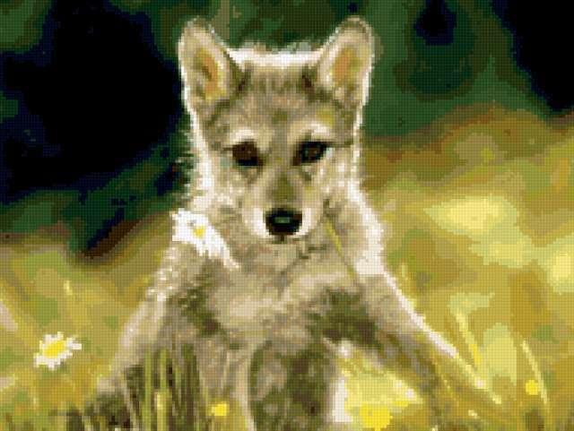 Волчонок с ромашкой
