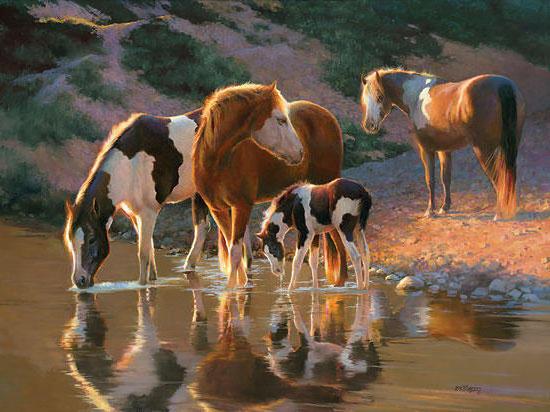Водопой, лошади, лошадь
