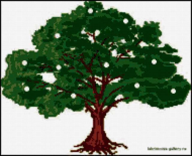 Денежное дерево, предпросмотр