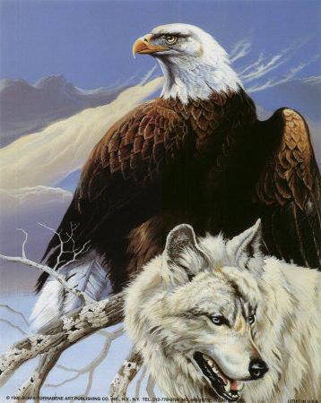 Волк и орел, оригинал