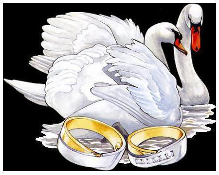 Пара лебедей, оригинал