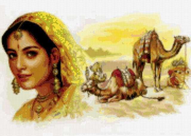девушка, женщина, верблюд,