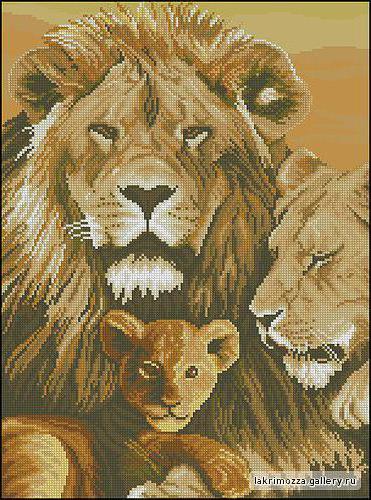 Семья львов, оригинал