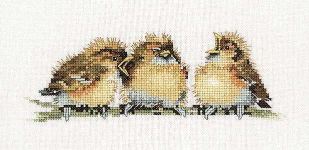 Воробьи, птицы, детям