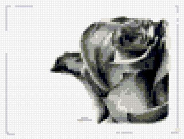 Троянда, предпросмотр