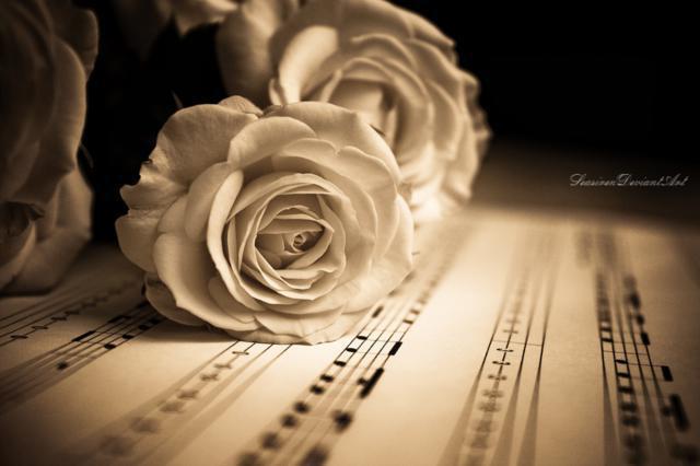 Натюрморт-розы-ноты, розы