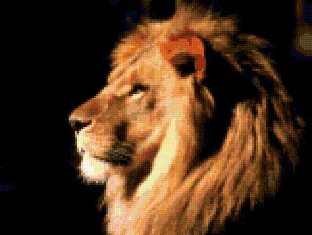 Профиль льва, предпросмотр