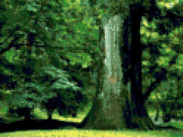 Вековой дуб, предпросмотр