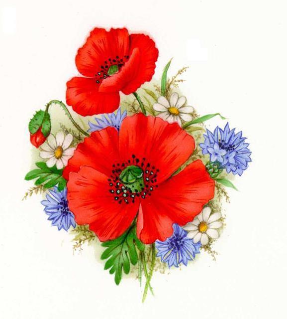 Полевые цветы, оригинал