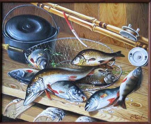 Улов, натюрморт, рыба, окунь,