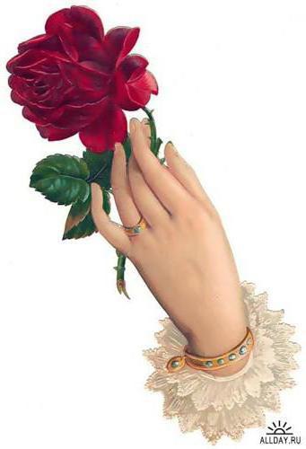 Роза в руке, роза.рука