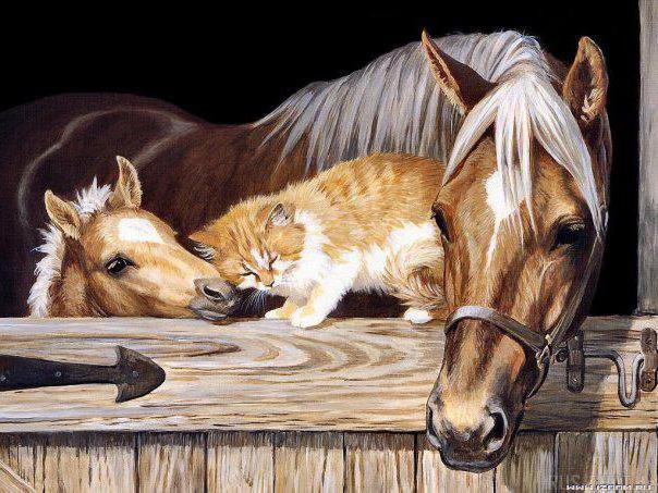 Лошадь и Жеребёнок, лошадь,