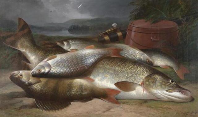 живопись, рыба, натюрморт,