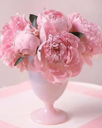 Пионы в вазе, пионы.цветы