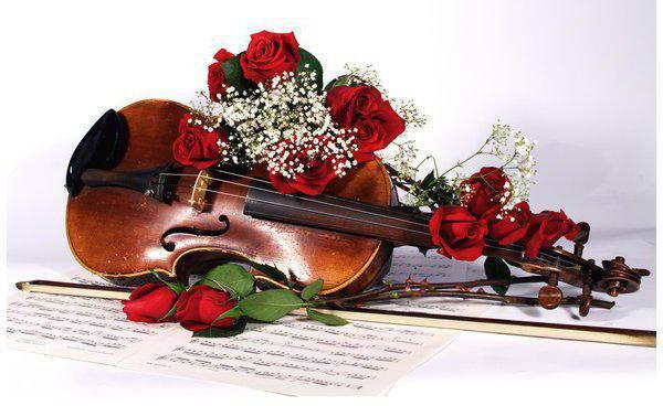Скрипка, оригинал