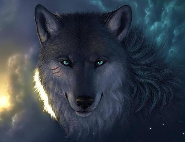 Волчица со шрамами, оригинал