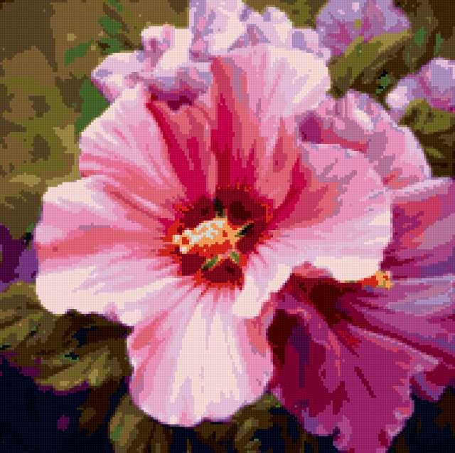 Цветок мальвы, предпросмотр