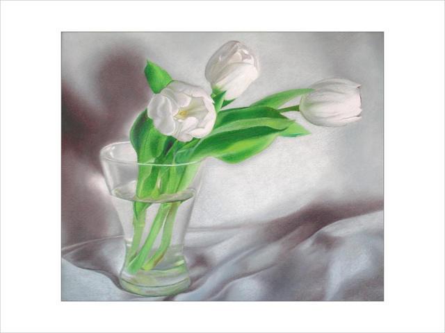 Белые тюльпаны., оригинал