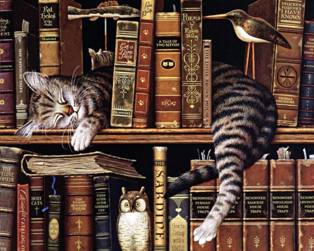 Кот на книжной полке, оригинал