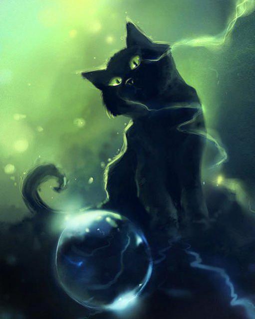 Чёрный кот и хрустальный шар,