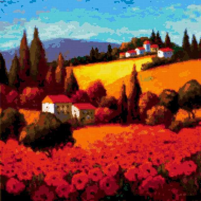 Тоскана, маковое поле